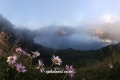 Mt,baekdu 0018