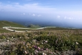 Mt,baekdu 0022