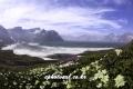 Mt,baekdu 0054