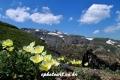 Mt,baekdu 0059