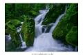 가리왕산-장전계곡-13