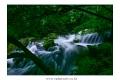 가리왕산-장전계곡-19