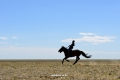 mongol-2013-21-jpg